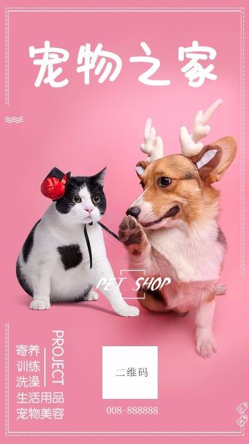 宠物之家 宠物寄养 宠物美容 宠物用品宣传海报