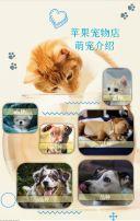 简约宠物店开业促销优惠模版
