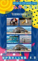海洋日 世界海洋日 保护海洋
