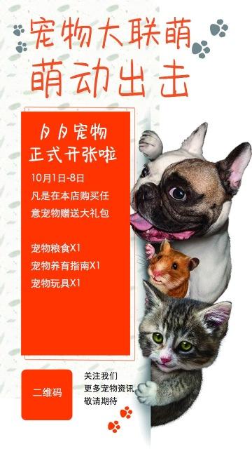 宠物店开业大吉新店海报