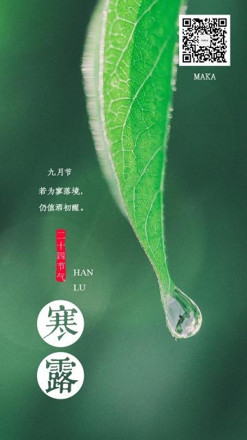 寒露二十四节气绿色叶子海报露水