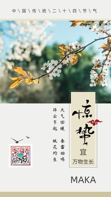 中国风传统节气之惊蛰宣传海报