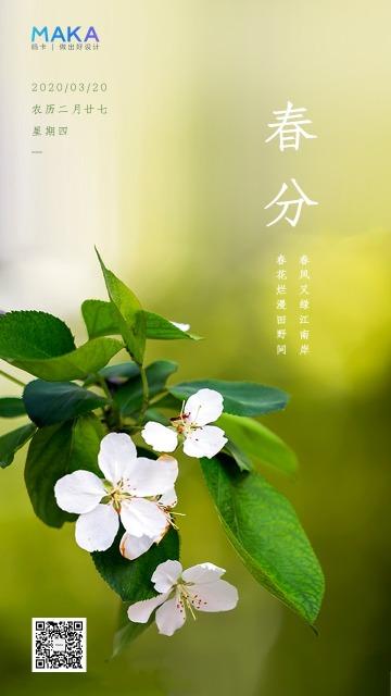 绿色清新二十四节气之春分时节海报