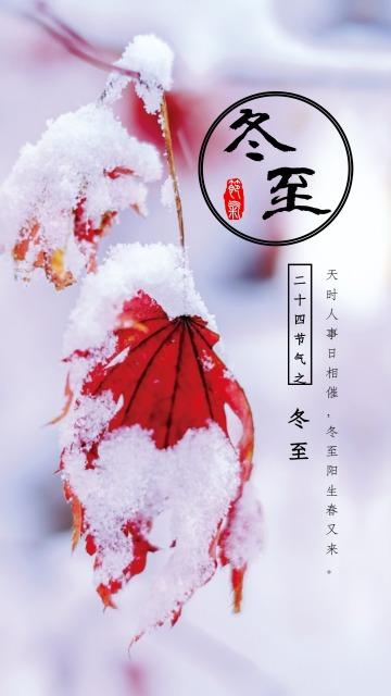 玫红色简约清新冬至节气日签手机海报