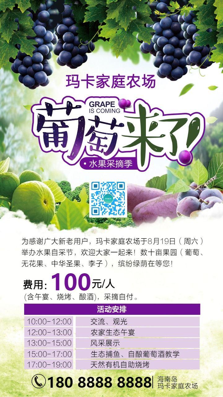 葡萄来了家庭农场水果采摘季