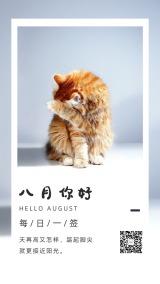 八月你好简约文艺励志8月心情早安问候日签手机版海报