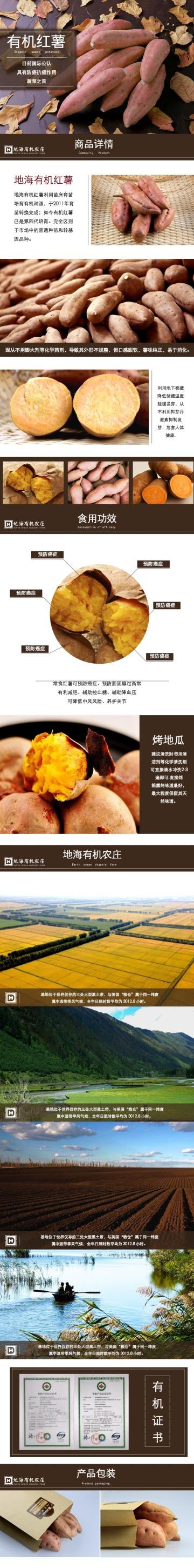 黄色自然清新地海有机红薯电商详情图