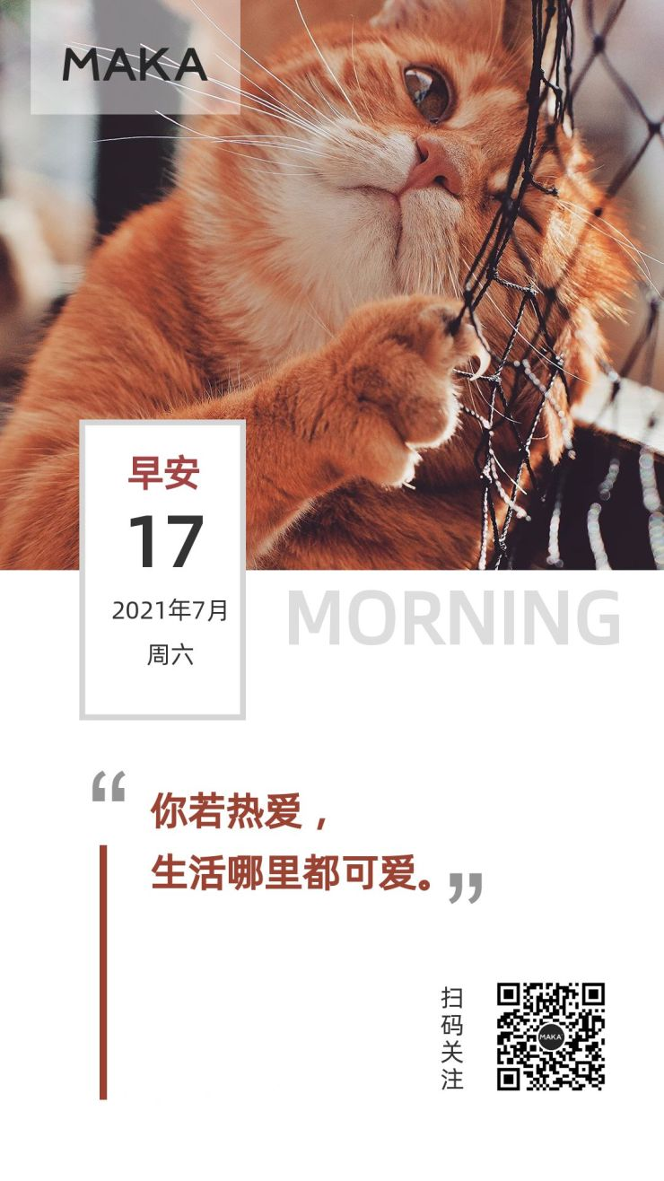 萌宠可爱风早安心情日签文艺简约猫咪海报