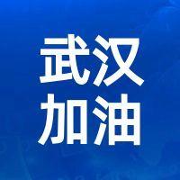 蓝色简约武汉加油公众号小图