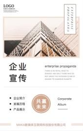 高端商务时尚简约棕色企业宣传手册招商手册