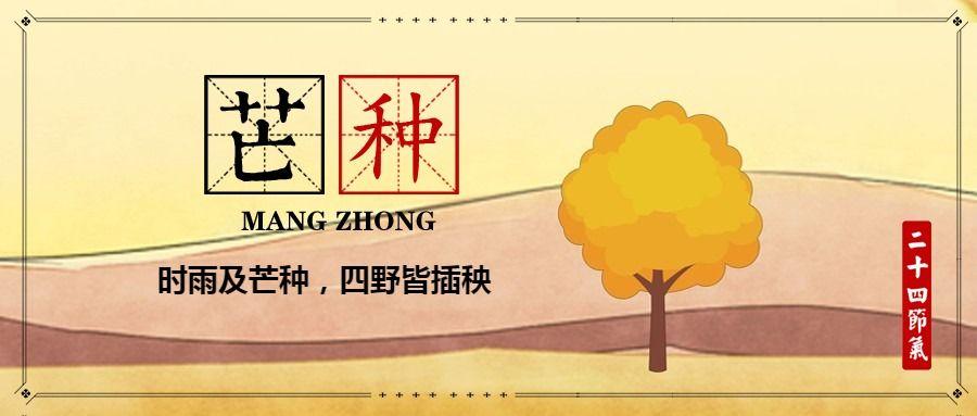 简约文艺传统二十四节气芒种微信公众号大图