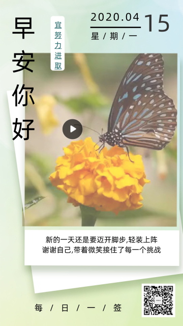 唯美简约蝴蝶早安日签手机视频模板