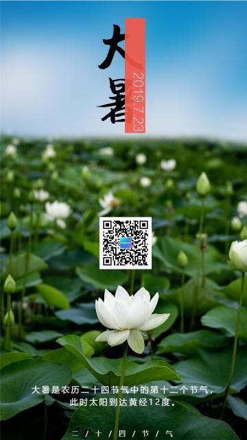 简约图文大暑节气宣传海报