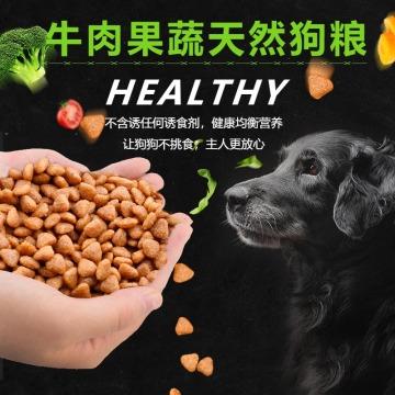 清新简约百货零售牛肉果蔬天然美味狗粮促销电商主图