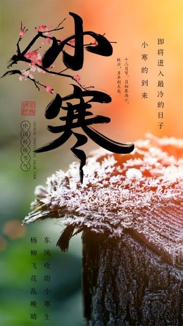 传统节气小寒日签 传统节气普及宣传 日签海报