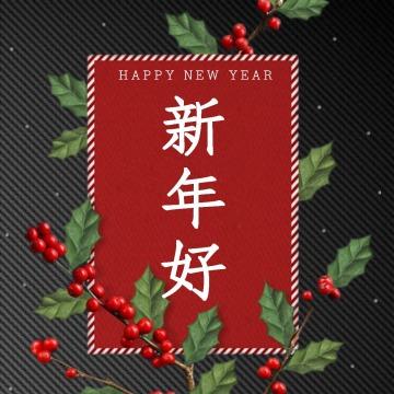 【新年次图】微信公众号封面小图文艺小清新简约祝福话题通用-浅浅