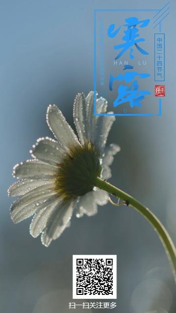 二十四节气寒露微信朋友圈宣传图