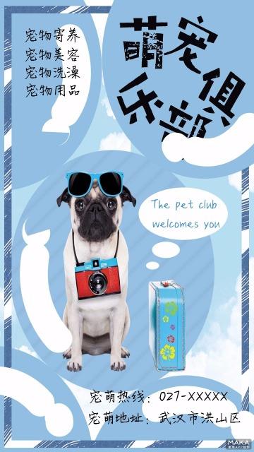 宠物店宠萌俱乐部宣传海报