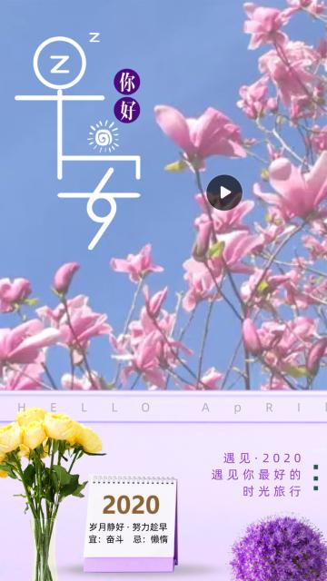 唯美简约紫色花朵早安日签手机视频模板