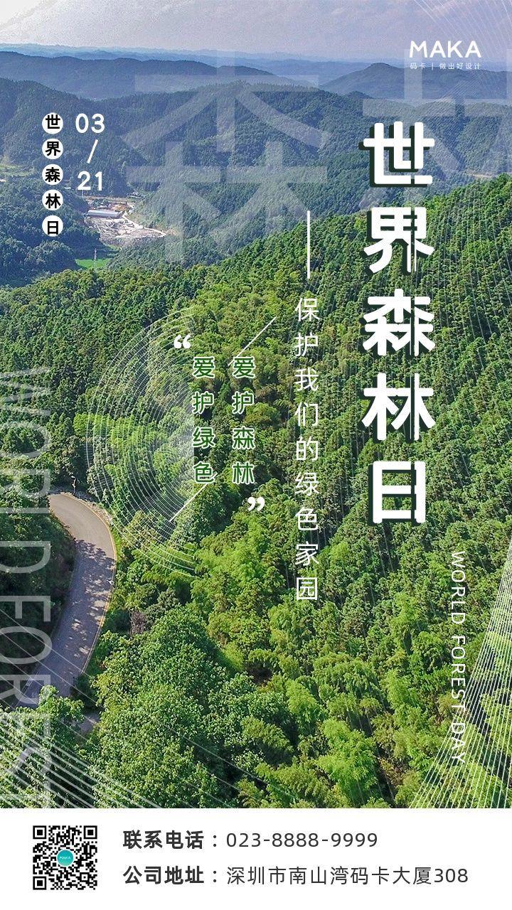绿色实景风格世界森林日公益宣传海报