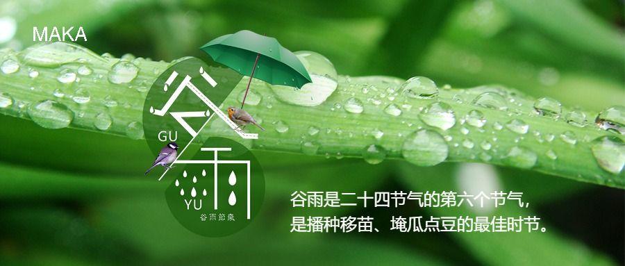 绿色文艺简约风谷雨节气公众号首图