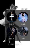 舞蹈培训招生模板 舞蹈培训班  兴趣班 招生模板