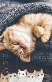 她的猫宠物相册成长记录喵咪治愈生活照