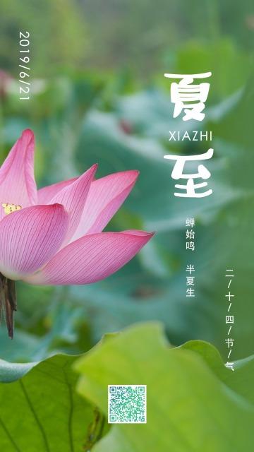 绿色中国风插画设计风格二十四节气之夏至宣传海报
