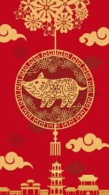 传统中国风乙亥猪年新春祝福视频贺卡