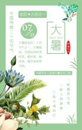 绿色清新传统二十四节气大暑介绍宣传H5模板