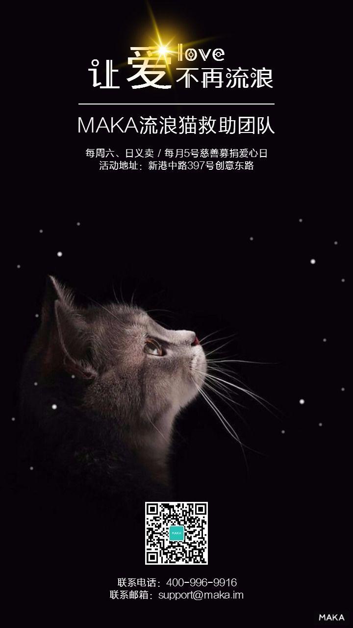 流浪猫救助关爱/宣传/活动海报