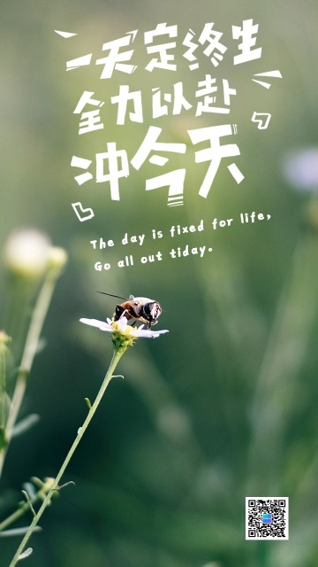 励志配图/日签/小蜜蜂/朋友圈配图