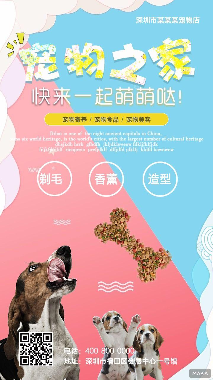宠物店介绍海报