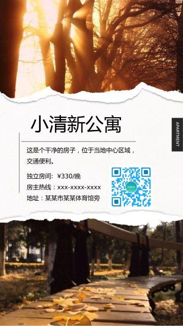 房地产精装小公寓火爆认筹宣传海报!