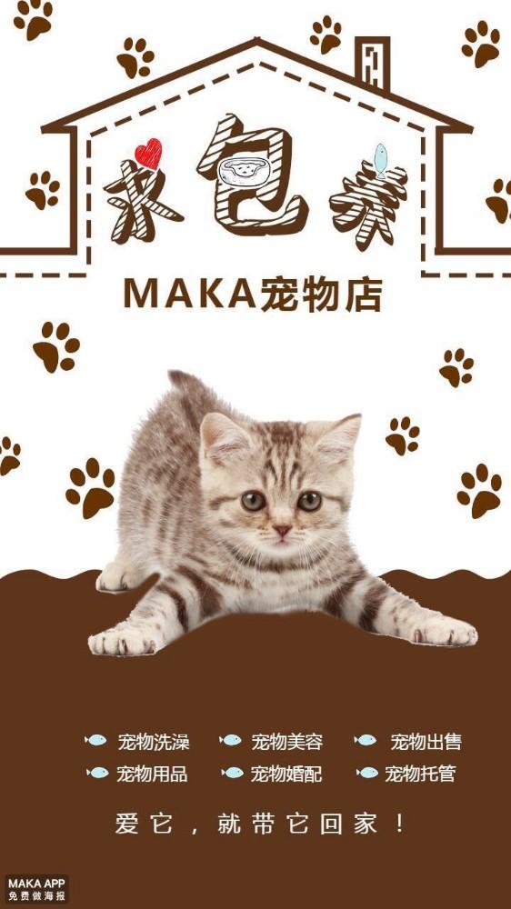 宠物店开业宣传/开业活动/猫咪狗狗宠物店介绍