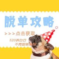 黄色清新文艺宠物风520表白日情人节公众号小图封面