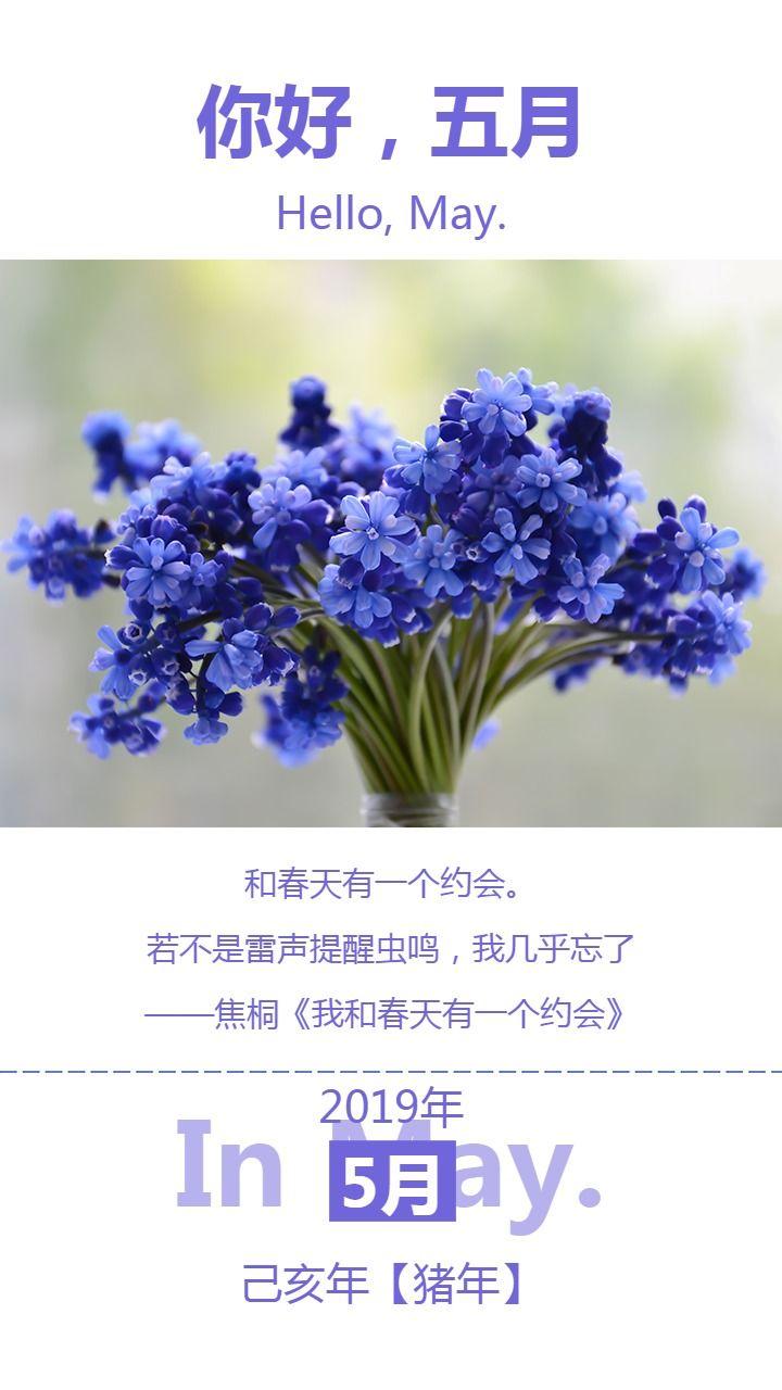 紫色清新文艺月初问候心情日签海报
