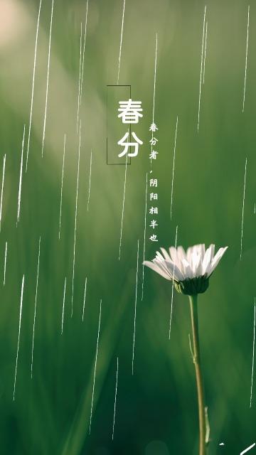 春分二十四节气唯美海报
