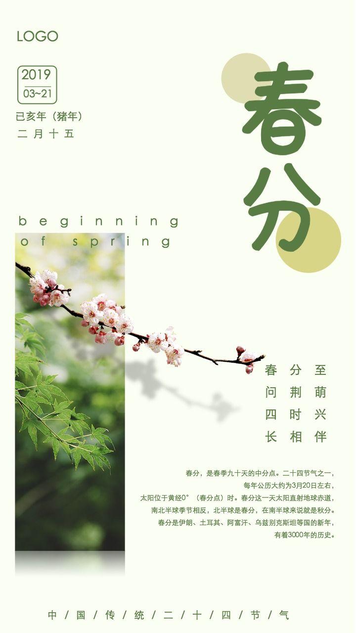 传统二十四节气春分小清新节气宣传海报