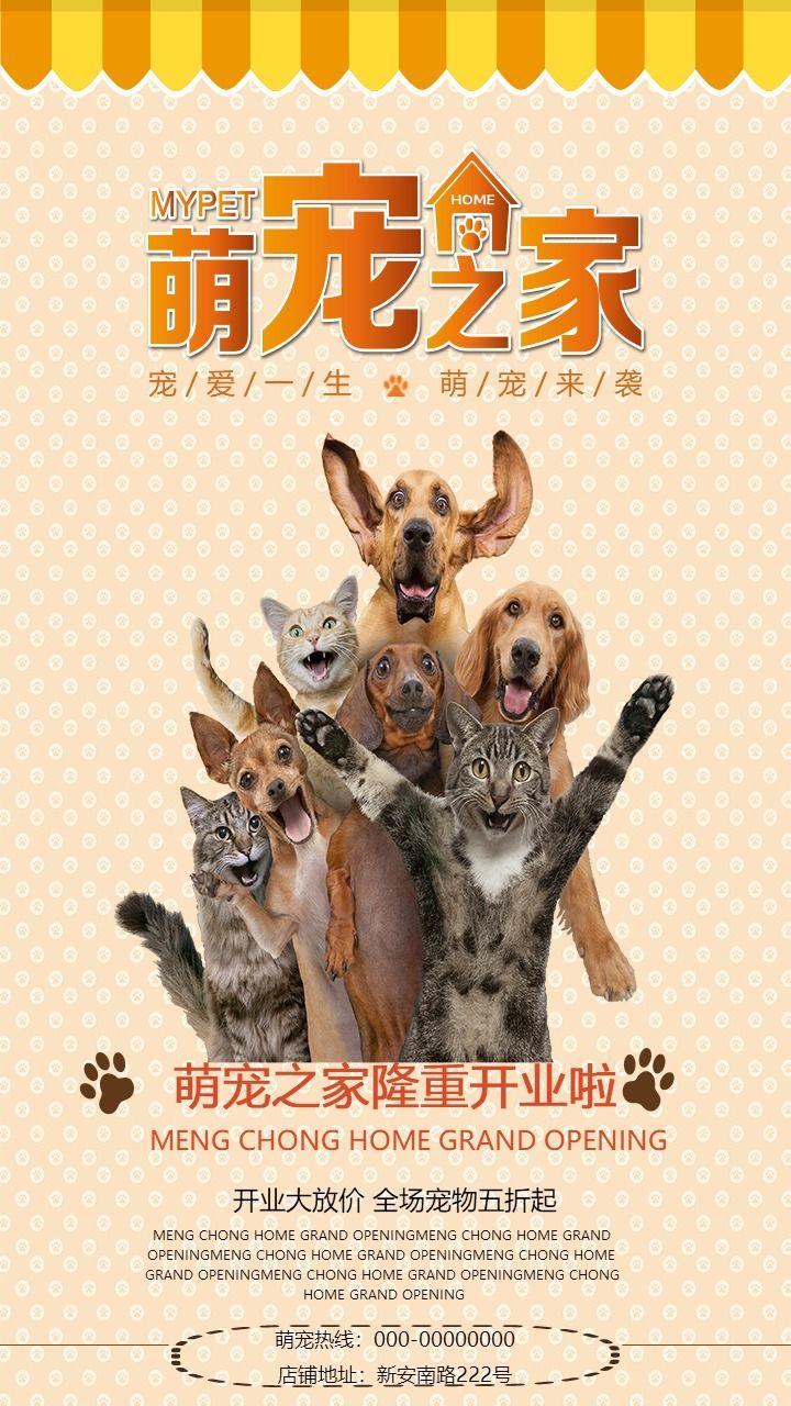 清新文艺宠物店新店开业大促销