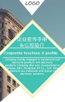 公司介绍 高端企业宣传 高端公司宣传 企业宣传册 企业简介 企业招商合作 公司宣