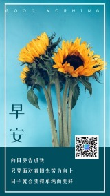 早安/日签/励志语录/心语心情正能量个人小清新文艺通用海报