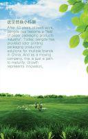 高端大气绿色健康环保