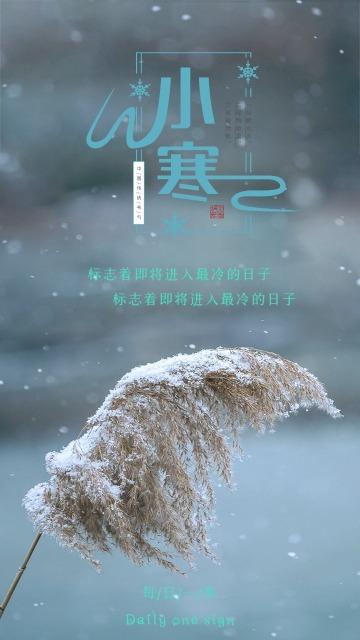 文艺小寒日签 小寒宣传普及 传统二十四节气