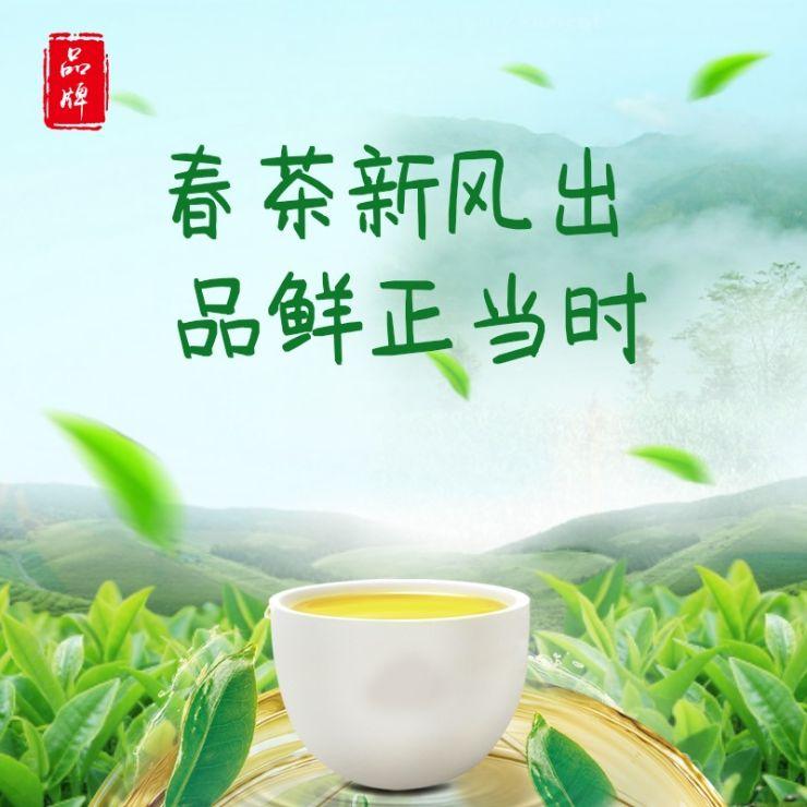 清新简约茶叶电商主图