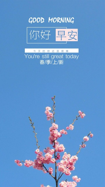 早安心情打卡简约清新春上新手机宣传海报
