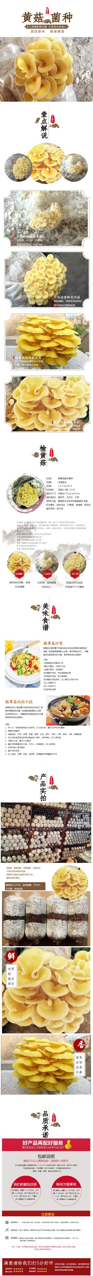 清新简约百货零售干货美食黄菇促销电商详情页