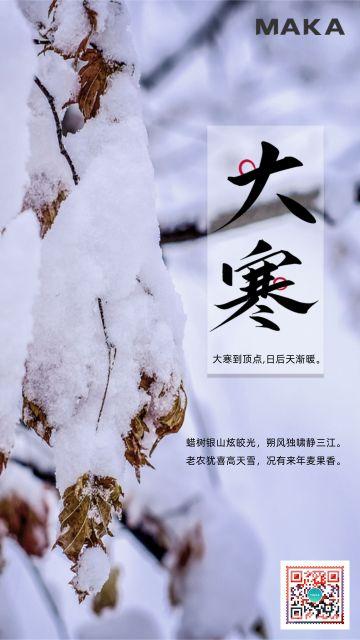 二十四节气大寒节气海报