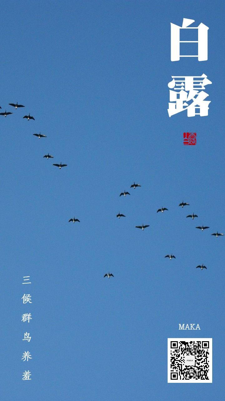 白露三候群鸟