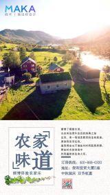 田园风农家乐宣传促销海报